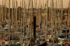 Port des Minimes