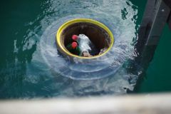 Seabin waste collector in operation in a marina